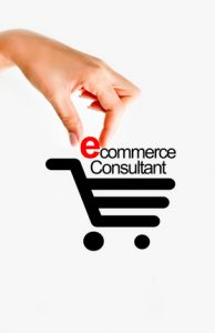 Consultance en e-commerce