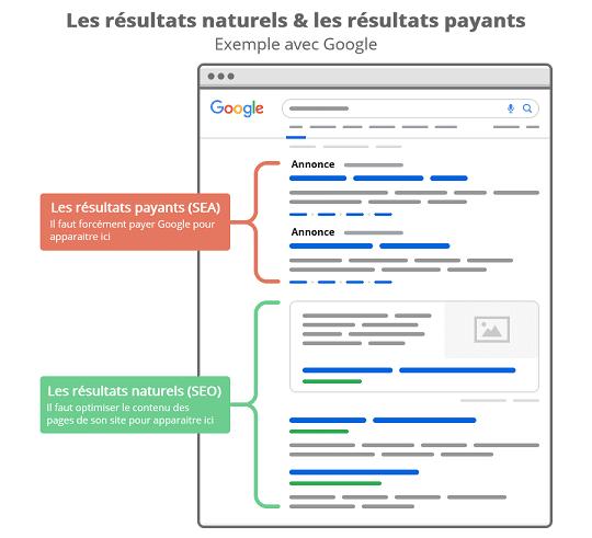 Exemple de résultats de recherche naturels et payants sur Google